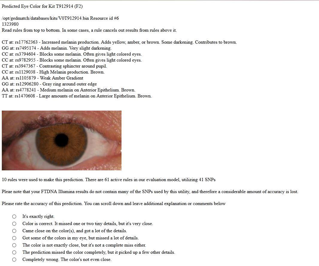 eyecolour